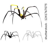 isolated  spider on a white...   Shutterstock .eps vector #1241767075