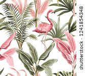 tropical vintage pink flamingo  ... | Shutterstock .eps vector #1241854348