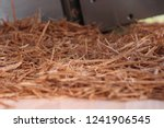 wood sawdust closeup.   Shutterstock . vector #1241906545