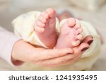 baby feet in mother hands. mom... | Shutterstock . vector #1241935495