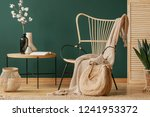 blanket on rattan armchair next ... | Shutterstock . vector #1241953372