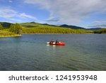 johnsons crossing  yukon ... | Shutterstock . vector #1241953948