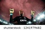 rio de janeiro   brazil... | Shutterstock . vector #1241979682