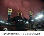 rio de janeiro   brazil... | Shutterstock . vector #1241979685