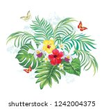 tropical summer print. exotic... | Shutterstock .eps vector #1242004375