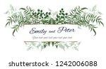 vector frame for invitation.... | Shutterstock .eps vector #1242006088