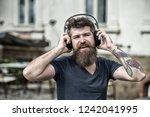 hipster enjoy high quality... | Shutterstock . vector #1242041995