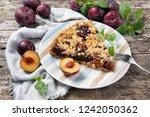 piece of plum cake on a plate... | Shutterstock . vector #1242050362
