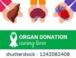 organ donation concept. flat... | Shutterstock .eps vector #1242082408