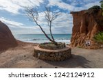 solitary tree in the cala sa...   Shutterstock . vector #1242124912