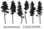 set of vector silhouettes of... | Shutterstock .eps vector #1242131935