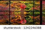 colorful autumn japanese garden ... | Shutterstock . vector #1242246388