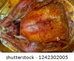 traditional roasted turkey... | Shutterstock . vector #1242302005