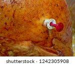 pop out internal temperature... | Shutterstock . vector #1242305908