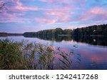 idyllic summer landscape. blue...   Shutterstock . vector #1242417268