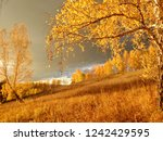golden autumn in the mountains  | Shutterstock . vector #1242429595