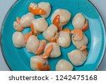 raw pecten maximus or great... | Shutterstock . vector #1242475168