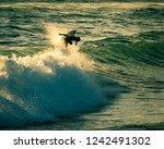 israeli waver raider   Shutterstock . vector #1242491302
