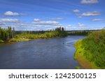 the river upper mouth birch... | Shutterstock . vector #1242500125