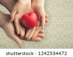 young woman holding red heart ... | Shutterstock . vector #1242534472