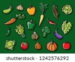 vegetables set collection... | Shutterstock .eps vector #1242576292