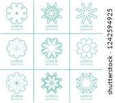vector design elements set ... | Shutterstock .eps vector #1242594925
