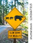 Bear Sign On The Road In...