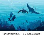 underwater tropical marine...   Shutterstock .eps vector #1242678505