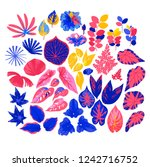 vector collection of different...   Shutterstock .eps vector #1242716752