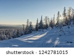 dawn in the winter in the... | Shutterstock . vector #1242781015