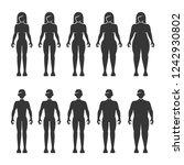 thin  normal  fat  overweight...   Shutterstock .eps vector #1242930802