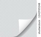 paper sheet with curled corner. ... | Shutterstock .eps vector #1242935248