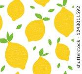 frash lemons modern beauty... | Shutterstock .eps vector #1243011592