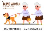 blind old woman with dark... | Shutterstock .eps vector #1243062688