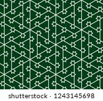 seamless linear pattern with... | Shutterstock .eps vector #1243145698