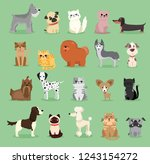 vector illustration set of cute ... | Shutterstock .eps vector #1243154272