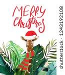 celebration tropical frame.... | Shutterstock .eps vector #1243192108