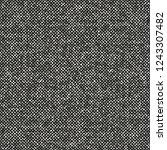 monochrome melange grain... | Shutterstock .eps vector #1243307482