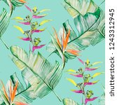 succulents and tropical leaves... | Shutterstock . vector #1243312945