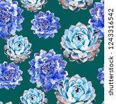succulents watercolor... | Shutterstock . vector #1243316542