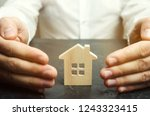 insurance agent protects the... | Shutterstock . vector #1243323415