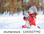 little boy in red winter... | Shutterstock . vector #1243327792