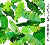seamless tropical pattern with... | Shutterstock .eps vector #1243339162