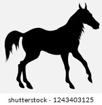 black vector silhouette of... | Shutterstock .eps vector #1243403125