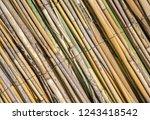 closeup reed mat. reed frame...   Shutterstock . vector #1243418542