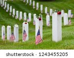 National Flags And Headstones...