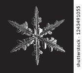 white snowflake isolated on... | Shutterstock .eps vector #1243491055