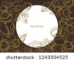isolated vector set of nuts and ... | Shutterstock .eps vector #1243504525