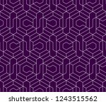 pattern with thin straight... | Shutterstock .eps vector #1243515562