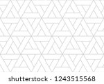 pattern with thin straight... | Shutterstock .eps vector #1243515568